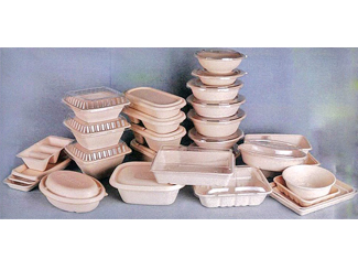 Bagasse Food Container/Boxes CD-BX-02