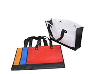 Non Woven Bag CDN-SB-3636